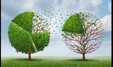 Как да постигнем финансово изобилие - без приливи и отливи